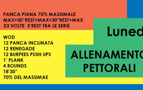 ALLENAMENTO CROSSFIT PETTORALI A CASA