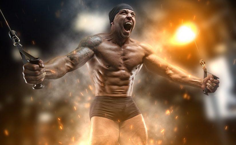 completamento del ciclo degli steroidi